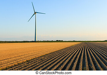 Windmill at farmer fields - Windmillat sunset at a farmer...