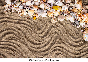 sand and shell - Background of sand, shells and sea start