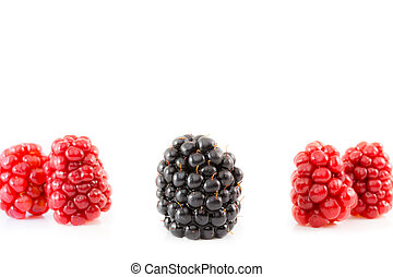 Ripe and unripe blackberry being different - Ripe and unripe...