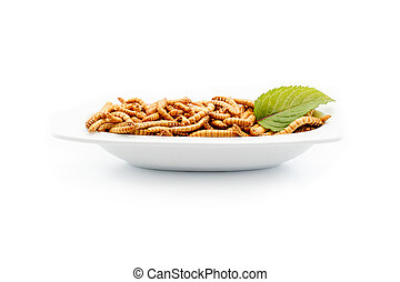 Healthy mealworms on white plate with decoration - Mealworms...