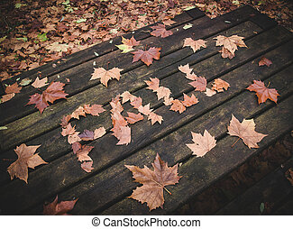 Word fall Written with leaves on a table