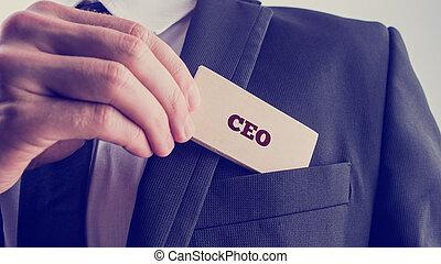 CEO, homem negócios, mostrando, leitura, cartão