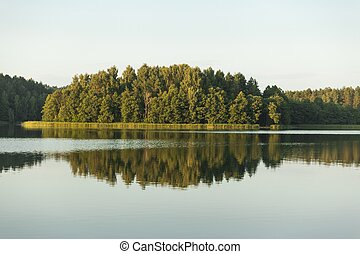 Trees and sky reflected in the lake - Landscape with trees...