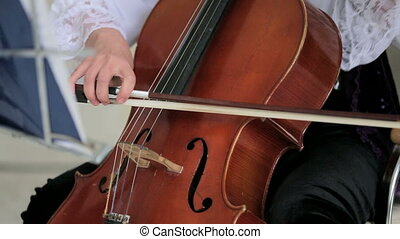 Woman Playing Cello. Close-up. - Close-up detail on the...