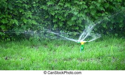 water splash on grass - Water splash on grass