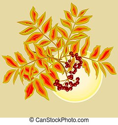 Rowanberry and sun vector - Twig rowanberry with leaves and...