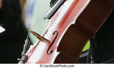 Violonist Ends Playing the Cello - Side footage: violonist...