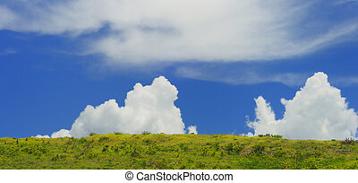 Landscape with clouds - Green vegetation landscape panorama...
