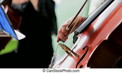 Cellist Playing the Violoncello - Side footage: Cellist is...