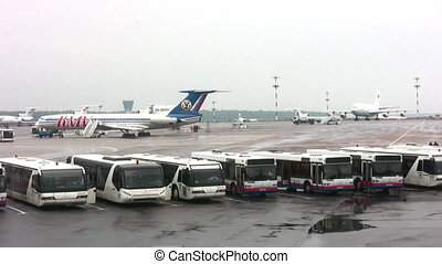buses in airport - Buses in airport
