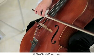 Cello TechniqueIn action - Close-up detail on the hands of a...