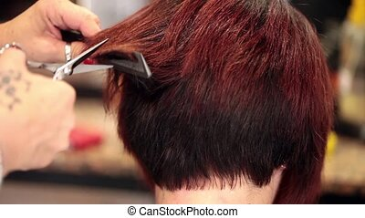 Haircut At Hairdresser - Video of young woman getting a new...