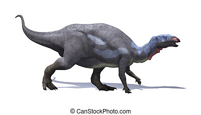 Camptosaurus Dinosaur - The camptosaurus was plant-eating,...