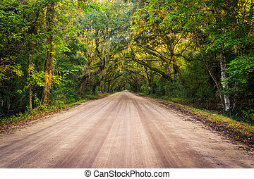Oak trees along the dirt road to Botany Bay Plantation on...