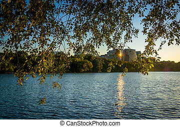The Rosslyn skyline seen through trees at sunset, from the...