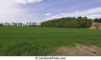Fields, Plains, Meadows, Pastures,
