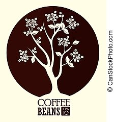 Coffee design over white background, vector illustration