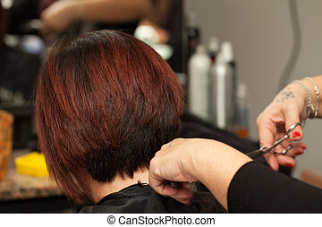 Hair Cut - Hair cut in a professional hairdresser salon