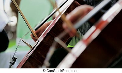 Two Musicians Playing the Violoncello. Close-up. - Close-up...