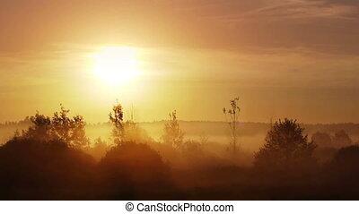 Sunrise on foggy morning