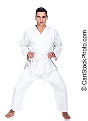 Martial arts - Portrait of a martial arts master on the...