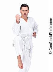 Martial arts - Professional karate fighter kicking Isolated...