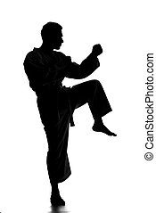 Martial arts - Silhouette of young man is practicing martial...