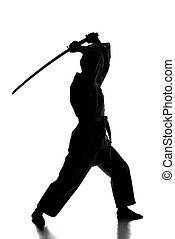 Martial arts - Silhouette of martial arts man is standing...
