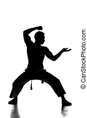 Martial arts - Silhouette portrait of a martial arts master...