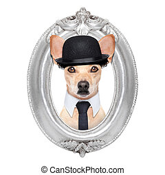 dog in a frame - terrier dog portrait of charlie chaplin,...