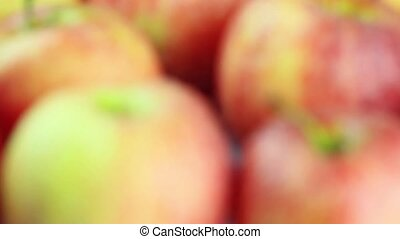 Ripe apples closeup