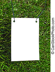 Framework on grass - Clear white paper on green grass for...