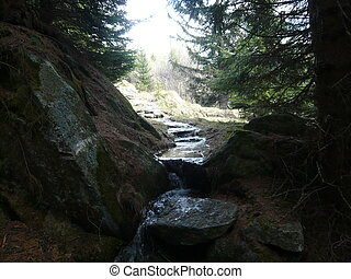 Mountain water source on Spring - An improbable water source...