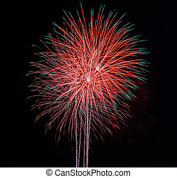 Fireworks in the night sky background