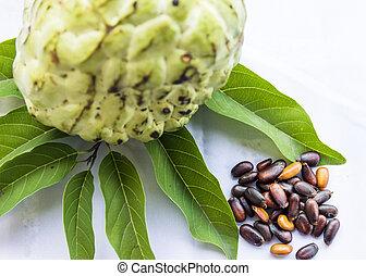 Custard apple seeds ,Custard apple is tropical fruit