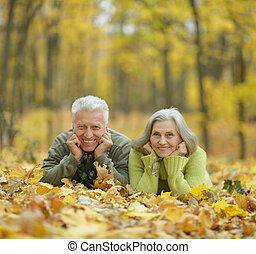 Mature couple in the autumn park - Portrait of a mature...