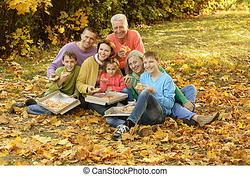 large family on a picnic