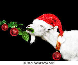 White new year goat in santa claus hat - White new year goat...
