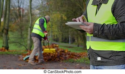 Foreman with tablet PC in background worker collect leaves