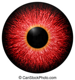 Illustration of red scary eye isolated on white