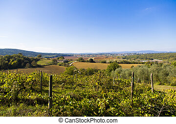 Tuscany hills - View of a Tuscan landscape with cottage in...