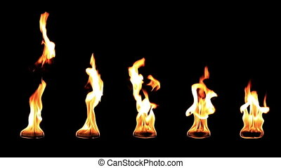 Real fire slow motion isolated on black background flame...