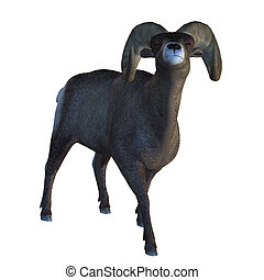 Horn Sheep - Digitally rendered illustration of a big horn...