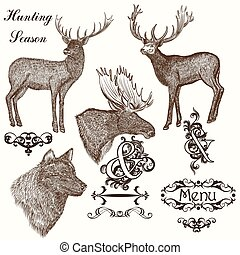 Collection of vector hand drawn ani - Set of vector detailed...