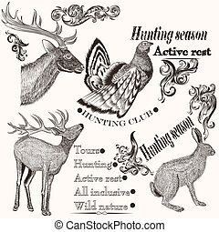 Collection of hand drawn animals in vintage style for...