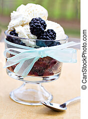 Blackberry cobbler topped with french vanilla ice cream. -...