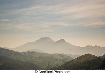 The Western Ghats - A peak above the tea plantations in the...