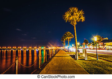 Palm trees along a path along the Matanzas River at night in...