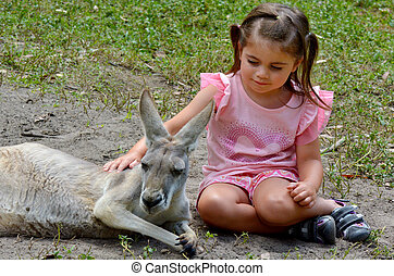 Eastern grey kangaroo female - Little girl age 04 petting an...