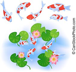 Carps and lotus in pond - Japanese or Chinese themes. Carps...